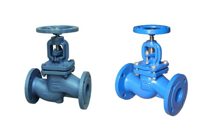 Cast Iron Globe Valve Picture 4