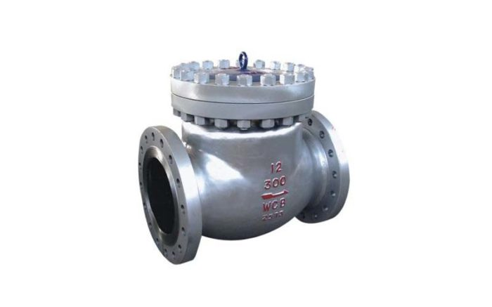 Cast Steel Check Valve Picture 1