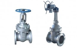 Cast Steel Gate Valve Picture 1