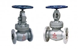 Cast Steel Globe Valve Picture 1