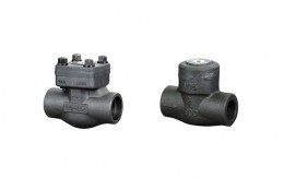 Forged Steel Check Valve Picture 1