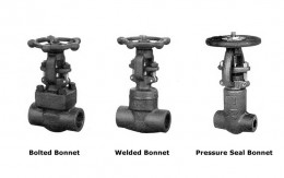 Forged Steel Gate Valve Picture 1