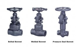 Forged Steel Globe Valve Picture 1