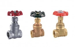 Threaded Gate Valve Picture 1